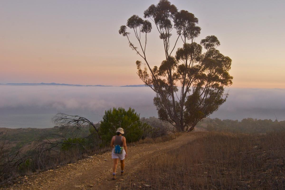 Palos Verdes hiking trail